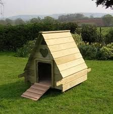 Duck house how cute gotta love the furry babies for Duck and goose houses