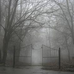 Gateway to Fog - by Andrew Krotov