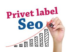 Professional white label seo helps you to optimize your website and get on top search engine. #seoresellerscompany #seoresellercompany #seoreseller #whitelabelseo #privatelabelseo