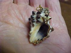 Spiny seashell pendant for wearing or craftssuitable by designer2, $5.00