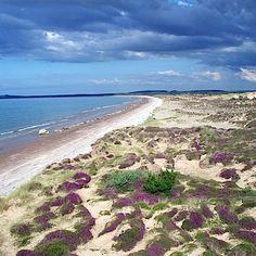 Findhorn beach, Scotland & Up Helly a Festival http://www.pinterest.com/pin/187251296980765689/