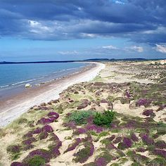 Findhorn beach, Scotland & Up Helly a Festival http://www.pinterest.com/pin/187251296980765689/