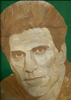 Ted Danson  Rice Straw art portrait Cheers Star Ted by museumshop, $159.00. Handmade with dried leaves of rice plant.