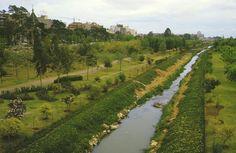 Cauce del Río Turia a la altura de la Alameda. Principios de la década de 1980.