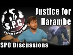 What is Justice for Harambe the gorilla? - YouTube