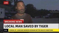 """""""Local man saved by tiger"""""""