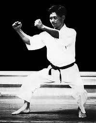 Resultado de imagen de kakiwake karate
