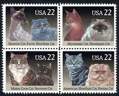 Issued by the United States Postal Service on February 5, 1988, this  depicts eight popular feline breeds: Siamese, Exotic Shorthair, Abyssinian, Himalayan, Maine Coon, Burmese, American Shorthair, and Persian