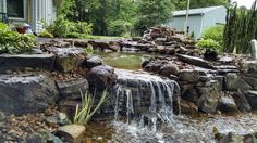 We built this negative edge Water Garden in Martin, Tn. Koi Ponds, Pond Ideas, Water Gardens, Outdoor Ideas, Waterfall, Nursery, Patio, Building, Flowers
