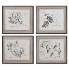 Uttermost Sepia Leaf Study by Grace Feyock 4 Piece Framed Original Painting Set & Reviews | Wayfair