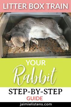 The Easiest Way to Litter Box Train Your Bunny Rabbit - Jaimie Listens Indoor Rabbit House, Rabbit Hutch Indoor, Indoor Rabbit Cage, House Rabbit, Diy Bunny Cage, Bunny Cages, Rabbit Cages, Rabbit Feeder, Rabbit Litter Box