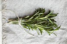 #Rosmarin ist eines der besten Kräuter für die Haare: Das Haarwachstum wird stimuliert, überschüssiger Talg wird ausbalanciert, Schuppenbildung geht zurück und unangenehmes Jucken wird gelindert. Da Rosmarin das Haar von Unreinheiten und Produktrückständen reinigt verhilft es ausserdem zu klarem, glänzenden Haar. Rosmarin-Spülung ist daher ein ideales, natürliches Mittel um schlappen und müden Haaren neuen Glanz und Sprungkraft zu verleihen.  Das Rezept ist einfach: (...)