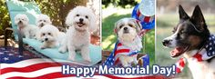 memorial day weather forecast 2014