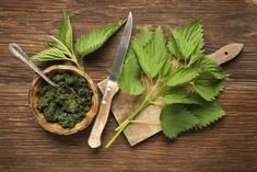 Anemia affects a vast majority of people in the world. Preventing and recovering from anemia is possible using easily available herbs. Here are 6 such herbs Superfood, Pesto, Detox Tee, Sistema Gastrointestinal, Aloe Vera Mask, Greasy Hair Hairstyles, Diy Hairstyles, Invasive Plants, Seasonal Allergies