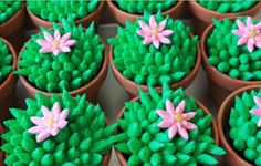 Cactus cupcakes.JPG. Again, no recipe or tutorial.  They're so cute I had to pin them even though I don't eat cupcakes.