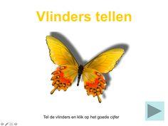 Digibordles Vlinders tellen