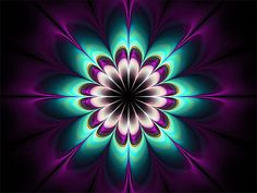 Royal Purple Mandala Fractal #fractal #mandala
