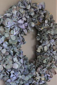 wreath. Dryed hydrangeas?