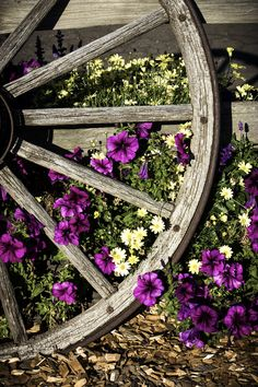 Whimsical Raindrop Cottage Petunias and old wagon wheel