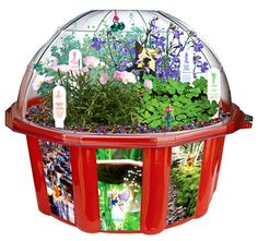 Fairy Triad Dome Terrarium by DuneCraft - $22.95