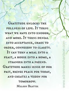 Find gratitude in everything www.adriennerichardson.com