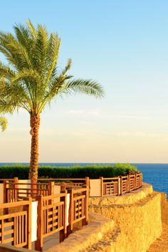 Sharm Resort - RED SEA HOTEL direkt am privaten Strand. All-Inclusive Urlaub am Meer. Das Hotel ist perfekt geeignet zum schnorcheln durch das vorgelagerte Korallenriff. Sharm El Sheikh ist eine top Destination. Die Erlebniswelt hat viel zu bieten: Erholung, Entspannung, Party, Nachtleben, Wüstensafari, Shopping sowie Tauchen und Schnorcheln. Urlaub in Ägypten. Urlaub in Sharm El Sheikh. Urlaub am Roten Meer in Ägypten. #egypt #party #vacation #hoteltipp #sharm #travel #hotel #tipp