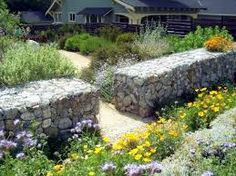 gabion wall and planting