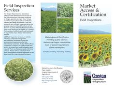 Field inspections, by the Oregon Department of Agriculture, Market Access & Certification