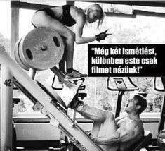 Squat Workout, Workout Memes, App Workout, Workout Shirts, Bodybuilding Memes, Gym Humor, Exercise Humor, Exercise Plans, Exercise Quotes