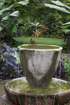 Water Gardens Small water feature doubles as a bird bath. Find more ideas @ Small water feature doubles as a bird bath. Find more ideas @ Small Water Features, Water Features In The Garden, Dream Garden, Garden Art, Garden Design, Container Water Gardens, Garden Fountains, Water Fountains, Garden Ponds
