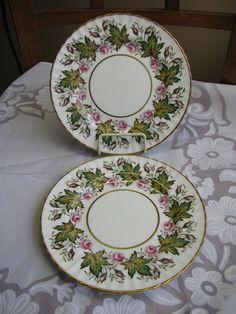 PARAGON Princess Elizabeth Pink Rose Bone China England LOT 2 Bread Butter Plate #Paragon