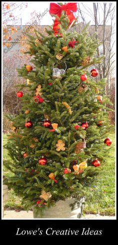 Winter Bird Feeding for Lowe's Creative Ideas  http://robinsnestingplace.blogspot.com/2012/11/winter-bird-feeding.html