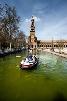 Pancho Tours is the pioneer of Seville Free Tours since 2009.