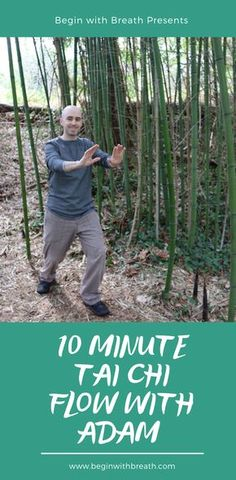 Yoga, meditation, qigong, and tai chi online videos and live classes. Begin with Breath. Tai Chi Video, Tai Chi Moves, Learn Tai Chi, Tai Chi Exercise, Tai Chi Qigong, Stress Relief, Stress Free, Pain Relief, Motivational Messages