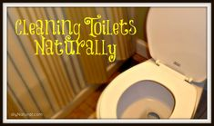 Homemade Toilet Cleaner Recipes and Instructions.
