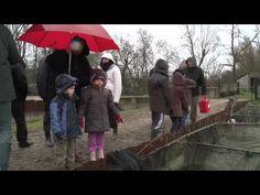 Fete du Poisson à Lachaussée en Meuse
