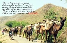 It's a long road, but it's worth it. #travel #Rajasthan #travelquote #explore #ttot #longroad #journey #photo #alwar
