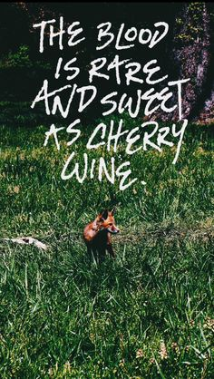 Typography, graphic design, hand lettering, fox, Cherry Wine by Hozier