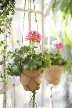 Gardening Hacks That Anyone Can Use Cottage Garden Design, Cottage Style Decor, Pink Geranium, Deco Floral, Terracota, Hanging Baskets, Plant Hanger, Indoor Plants, Pot Plants