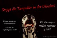 EM2012 Ukraine Ukraine, Social Media, Movie Posters, Emotional Photography, Psychics, Germany, Film Poster, Social Networks, Billboard