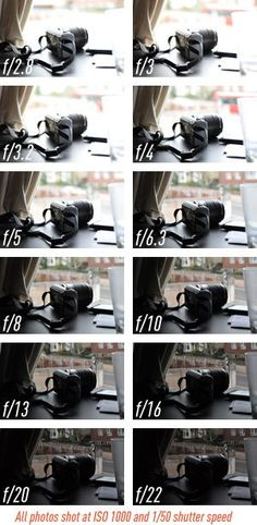 Photography Tips - DSLR - Depth of Field -  Aperture guide