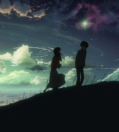 5 Centimeters Per Second. Without doubt the most most beautiful animated movie I have ever seen, in both story and animation.
