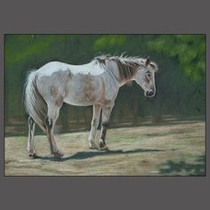 HORSE ART by Susan Monty.  I LOVE THIS ONE!