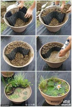 cool mini-water garden idea