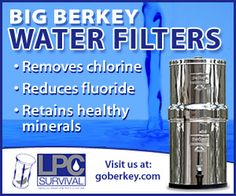 How to Thoroughly Clean Your Berkey Water Filter Inside and Out!