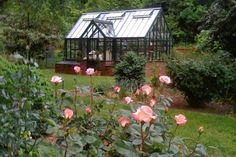 "Backyard greenhouse - ""The New Woman Cave"" - WSJ Greenhouse Academy, Outdoor Greenhouse, Portable Greenhouse, Backyard Greenhouse, Small Greenhouse, Greenhouse Wedding, Greenhouse Plans, Wooden Greenhouses, Greenhouse Interiors"