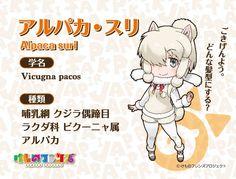「けものフレンズ」第3話のご視聴ありがとうございました。トキ、アルパカ・スリが登場しましたが、他にも…。気になる方はぜひ第3話をご覧下さいませ♪ そしてその子の事をもっと詳しく知りたい方は『けもフレ図鑑』もご覧下さい♪ #けもフレ (link: http://kemono-friends.jp/zoo/) kemono-friends.jp/zoo/