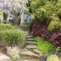 Mediterranean Garden Design Ideas, Pictures, Remodel, and Decor - page 8