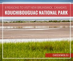 We share eight reasons to visit Kouchibouguac National Park in New Brunswick, Canada from pristine sandy beaches to active outdoor adventures.