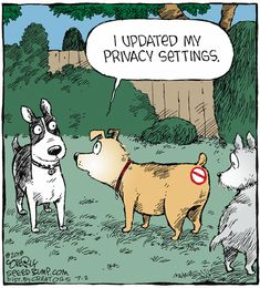 How Do Dogs Choose Their Favorite Person Dog Jokes, Cartoon Jokes, Cartoon Dog, Dog Cartoons, Memes Humor, Funny Memes, Tech Humor, Funny Quotes, Dog Comics